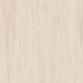 Линолеум Tarkett Standard Plus - Sand light 0912 (рулон)