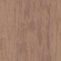 Линолеум Tarkett Standard Plus - Sand dark 0915 (рулон)