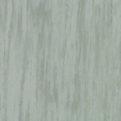 Линолеум Tarkett Standard Plus - Pale green 0923 (рулон)