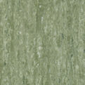 Линолеум Tarkett iQ Optima - Sage green 0836 (рулон)