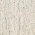 Линолеум Tarkett iQ Optima - Grey white 0886 (рулон)